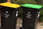 green-yellow-bins.jpg