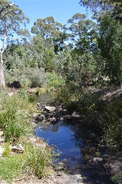 Watercourse Image.jpg